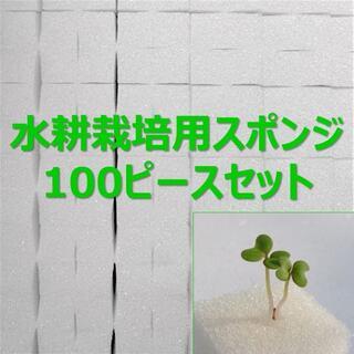 ★無農薬 水耕栽培!十字切れ目入りスポンジ(2.5×2.5cm) 100株分(野菜)
