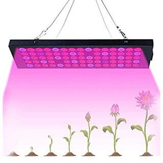 植物育成ライト 多肉植物 新品未使用 送料無料(その他)