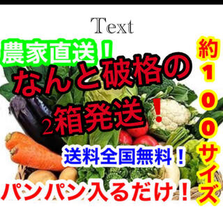 約破格❗️100サイズ2箱発送❗️農家直送野菜詰め合わせ送料全国無料❗️(野菜)