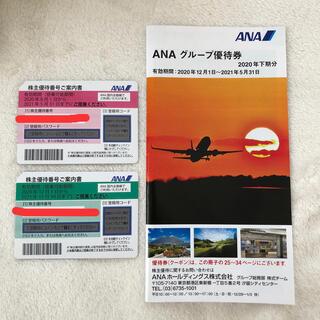 ANA株主優待券 2枚 2021年11月30日迄(その他)