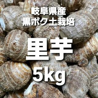 ⑤07 岐阜県産 無農薬 ねっとり里芋 5kg お得!(野菜)