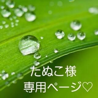 たぬこ様専用ページ♡(野菜)