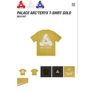 アークテリクス(ARC'TERYX)のPALACE ARC'TERYX T-SHIRT GOLD L(Tシャツ/カットソー(半袖/袖なし))