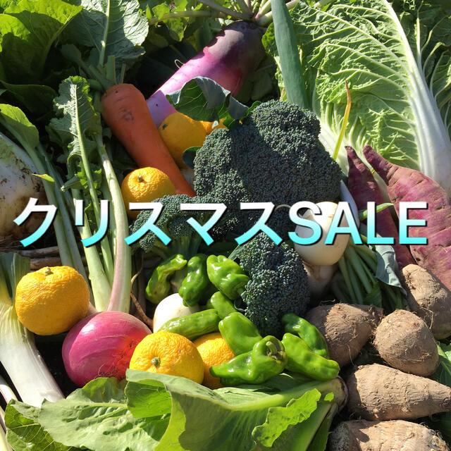 野菜BOX BIGクリスマスSALE 食品/飲料/酒の食品(野菜)の商品写真