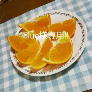 blue様専用!!約6kgです(*^^*)(フルーツ)