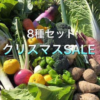 8種の野菜BOX  クリスマスSALE(野菜)