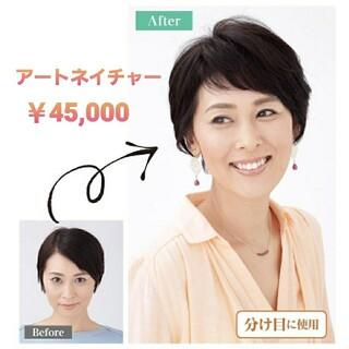 4万5千円■新品 アートネイチャー ジュリアオージェ エアリーウィッグモア