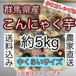 【群馬県産】こんにゃく芋 約1kgを5個 合計5kg手作りこんにゃく用(野菜)