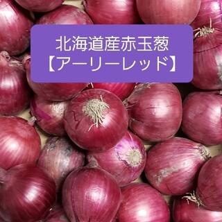 北海道産赤玉ねぎ【アーリーレッド】S、Mサイズ 約5キロ(野菜)