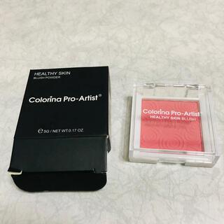 チーク 新品 ColorinaPro-Artist(チーク)