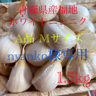 青森県産福地ホワイトニンニク A品Mサイズ1.5kg(野菜)