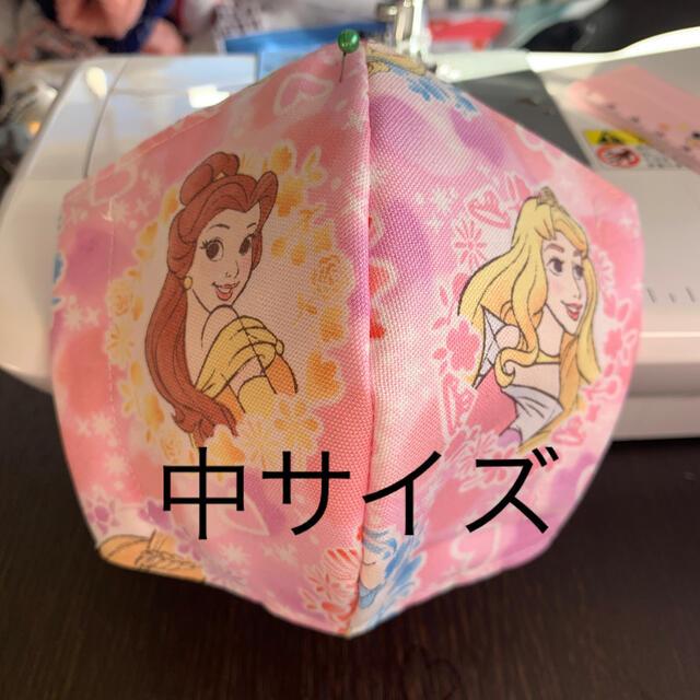 THE MASK(マスク)の即日発送 ディズニープリンセス ベル オーロラ姫 中サイズ ハンドメイドのキッズ/ベビー(外出用品)の商品写真