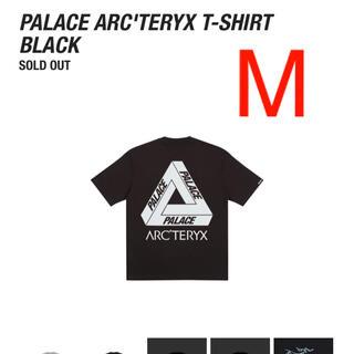 アークテリクス(ARC'TERYX)のPALACE ARC'TERYX T-SHIRT(Tシャツ/カットソー(半袖/袖なし))