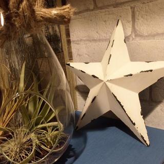 ロンハーマン(Ron Herman)の星形ブリキのオーナメント(ホワイトM)(置物)