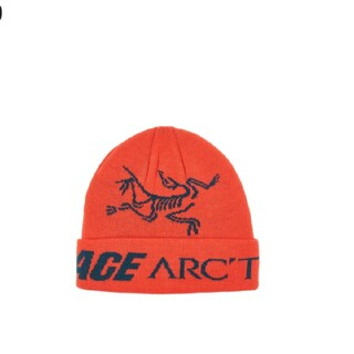 アークテリクス(ARC'TERYX)のpalace ARC'TERYX ビーニー(ニット帽/ビーニー)