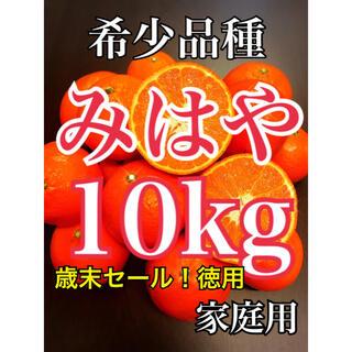 最終✨希少品種 みはやみかん 家庭用10キロ(フルーツ)