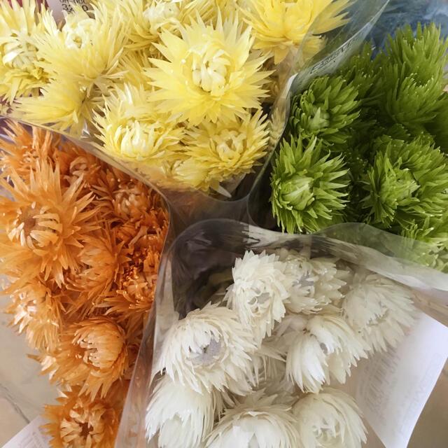 flower happyshops様専用 ハンドメイドのフラワー/ガーデン(ドライフラワー)の商品写真