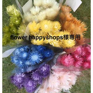 flower happyshops様専用(ドライフラワー)