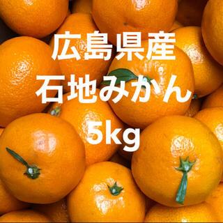 広島県産 石地みかん いしじ 蜜柑 5kg 産地直送 送料無料(フルーツ)