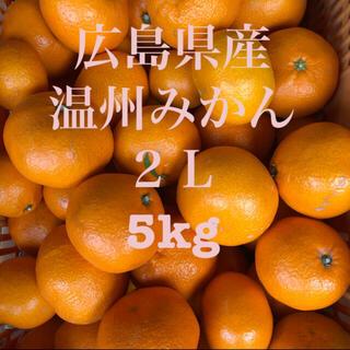 広島県産 温州みかん 蜜柑 2L 5kg 産地直送 送料無料(フルーツ)