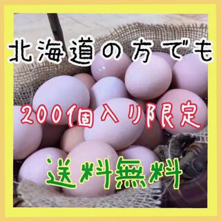 コーチン200 (野菜)