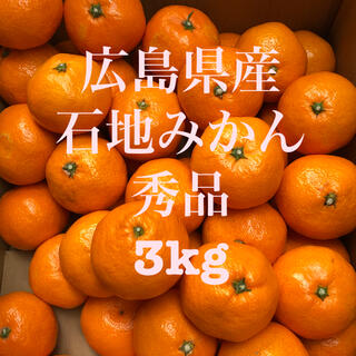 広島県産 石地みかん いしじ 蜜柑 秀品 3kg ご贈答用可 産地直送 送料無料(フルーツ)
