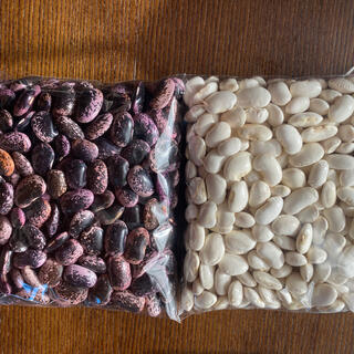北海道産有機花豆 1キロ(野菜)