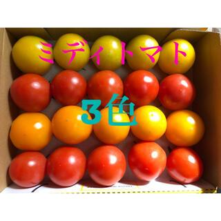 ミディトマト3色セット(野菜)