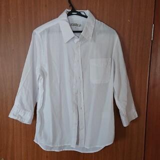 7分袖 シャツ ホワイト コットン100(Tシャツ/カットソー(七分/長袖))