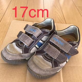 ファミリア(familiar)のGEOX 靴 17cm キッズ 革スニーカー(スニーカー)