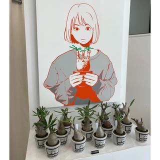 backsideworks. × BOTANIZE 植木鉢大小セット(プランター)