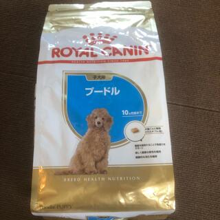 ロイヤルカナン(ROYAL CANIN)のドッグフード(ペットフード)