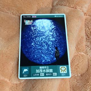 加茂水族館 ロゲットカード(ノベルティグッズ)