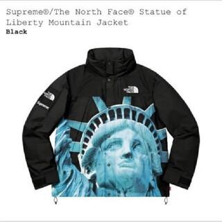 シュプリーム(Supreme)のM Supreme The North Face mountain jacket(マウンテンパーカー)