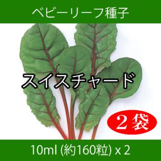 ベビーリーフ種子 B-43 スイスチャード 10ml 約160粒 x 2袋(野菜)