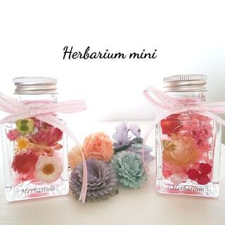 ハーバリウムミニ ピンク2本セット(その他)