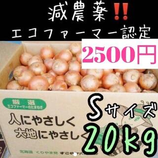 a52 北海道産 減農薬 玉ねぎ Sサイズ 20キロ(野菜)