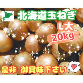 (送料無料)北海道玉ねぎL大サイズ20kg☆島離島への配送はしてません(T-T)(野菜)