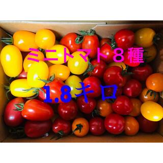 ミニトマト8種セット 1.8キロ (野菜)