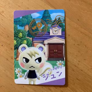 ニンテンドウ(任天堂)のあつもりカード ジュン(カード)