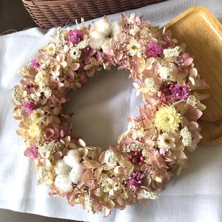 紫陽花とコットンのアンティークリース♡ドライフラワーリース(ドライフラワー)
