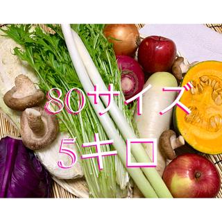 無農薬栽培野菜 80サイズ満杯詰め(野菜)
