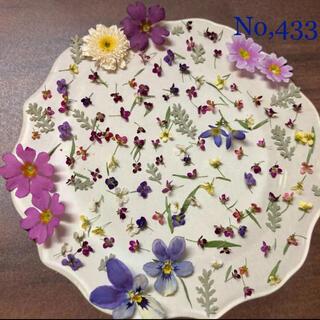 No,433    アリッサム100個と小花ミックス ドライフラワー素材(ドライフラワー)