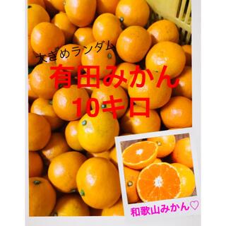 和歌山有田みかんMからか3エル大きめランダム10キロ(フルーツ)