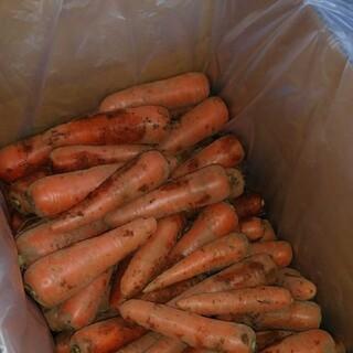 千葉県産ミニにんじん10kg(9.5kg)(野菜)