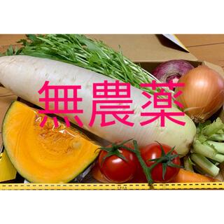 新鮮野菜の詰め合わせセット(野菜)