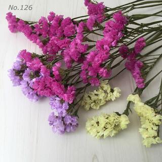 No.126  スターチス ドライフラワー 花材 ピンク 紫 黄色(ドライフラワー)