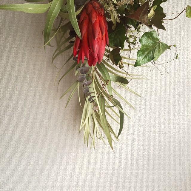 *専用* フオルモーサ&プロテア  ドライフラワースワッグ ハンドメイドのフラワー/ガーデン(ドライフラワー)の商品写真
