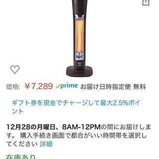 アラジン 遠赤 グラファイトヒーター AEH-G406A(T)(電気ヒーター)