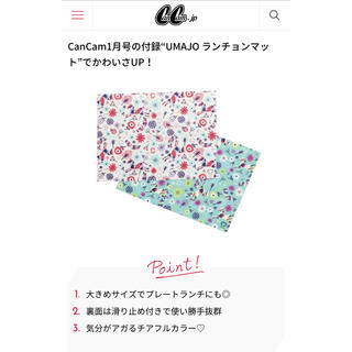 CanCam付録/ランチョンマット(その他)